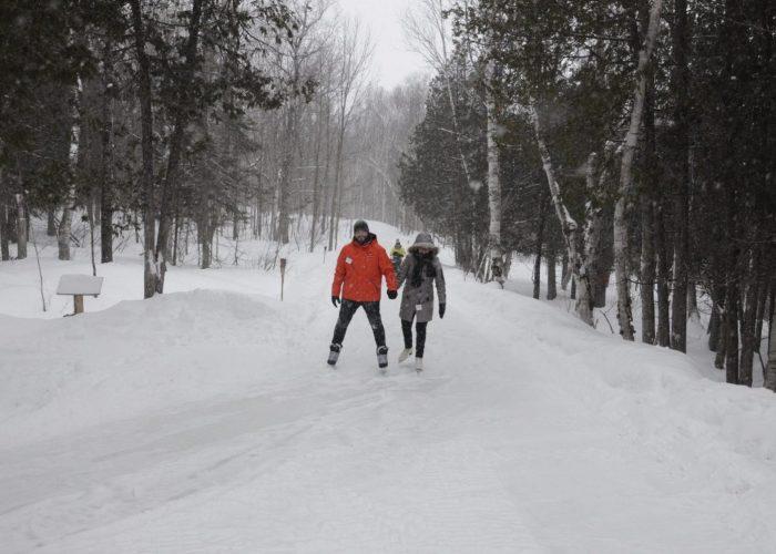 Sentier de patin en forêt