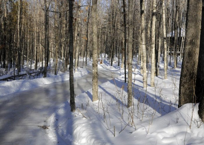Sentier de patin