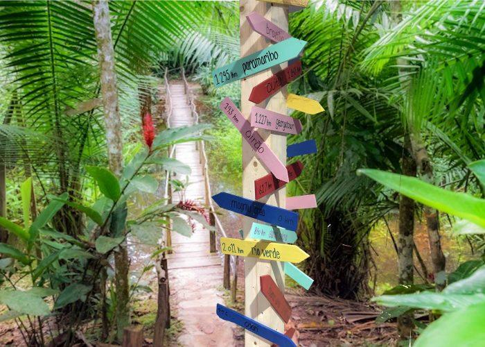 amazonie direction
